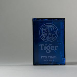 Tiger: It's Time Oct Trophy 2005
